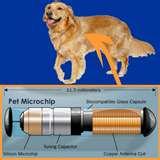 Microchips in pets